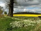 Frühling im Schweriner Umland