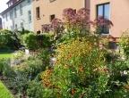 Unser Garten im Herbst